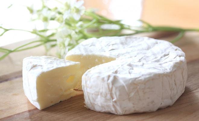 熱中症対策にチーズが有効?外でトレーニングする人は必見